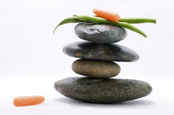 Pods of green beans and baby carrot on the top of zen stones pyramid in balance