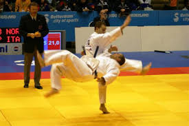 ju jitsu images