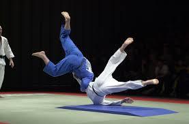 judo download