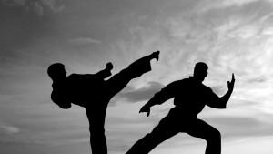 karate_fight