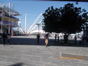 Nella foto, in alto: il porto vecchio di Genova