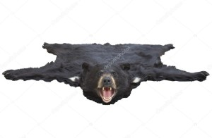 Nella foto, in alto: Se fosse passato qualcuno, ora avremmo una pelle d'orso davanti al camino?