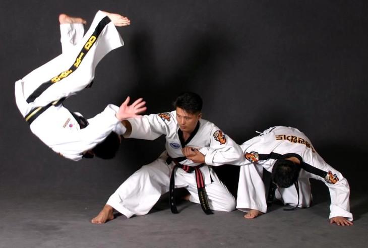 hapkido-example-1