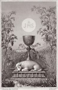 agnello di Dio